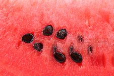 Free Slice Of Watermelon. Close Up. Whole Background. Stock Image - 32716551