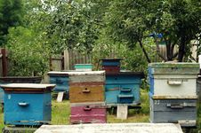 Free Beehives Stock Images - 32737524