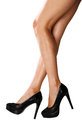 Free Female Legs Royalty Free Stock Photography - 32751297