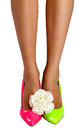 Free Rose Flower Near Female Legs Royalty Free Stock Photography - 32751307