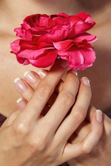 Free Hands With Flower Stock Images - 32751284