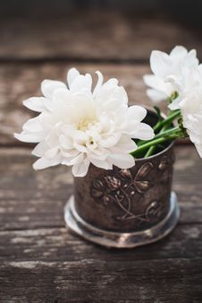 Free White Flowers Chrysanthemum In The Bowl Royalty Free Stock Image - 32759796