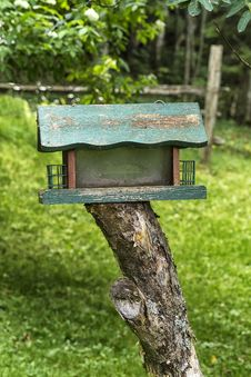 Free Bird Feeder Royalty Free Stock Image - 32776376