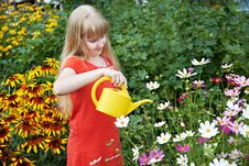 Free Little Girl Watering Flowers Stock Photos - 32794073