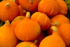 Free Pumpkins Royalty Free Stock Images - 32795519