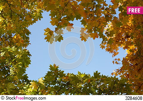 Free Autumn Royalty Free Stock Photos - 3284608