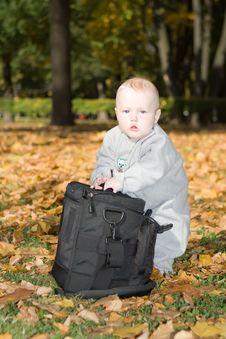 Big Bag Stock Images