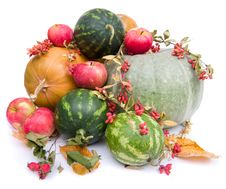 Free Autumn Harvest Royalty Free Stock Image - 3281586