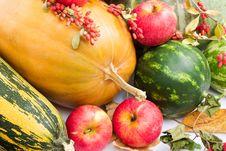 Free Autumn Harvest Royalty Free Stock Image - 3281826
