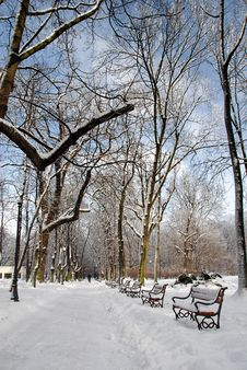 Free Park In Winter Royalty Free Stock Photos - 3281928