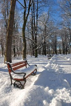 Free Park In Winter Royalty Free Stock Photo - 3281945