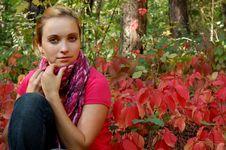 Autumn Sadness Stock Photos