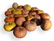 Free Ripe Pumpkins Stock Image - 3283341