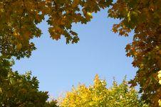 Free Autumn Stock Photography - 3284552