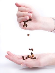 Free Handful Of Coffee Beans Royalty Free Stock Photo - 3287075