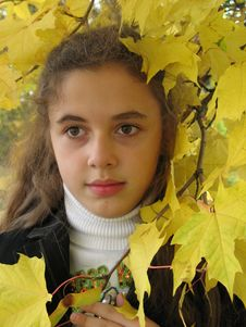 Free The Young Girl In An Autumn Stock Image - 3287321