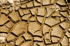 Free Cracked Soil Royalty Free Stock Photography - 3289387