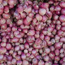 Free Shallot Background Royalty Free Stock Image - 32807326