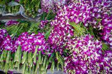 Free Bouquet Of Dendrobium Pompadour Orchids Royalty Free Stock Photos - 32807888