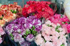 Free Colorful Flowers Royalty Free Stock Image - 32807896