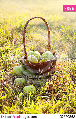 Free Basket Of Apples Royalty Free Stock Image - 32829856