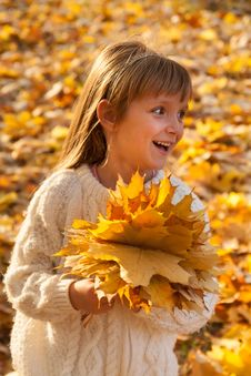 Free Little Girl With Autumn Leaves Stock Image - 32834571