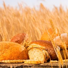 Free Homemade Bread And Wheat On The Wooden Table Stock Photo - 32835800
