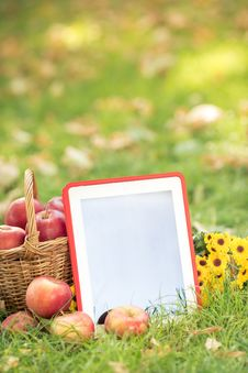 Free Basket Of Red Apples And Tablet PC Stock Photo - 32835880