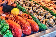 Show-window Of Seafood Stock Photo