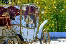 Free Wedding Carriage Stock Photos - 32856393