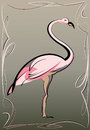 Free Pink Flamingo Royalty Free Stock Photography - 32864087