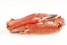Free Crab Claws Stock Image - 32863651