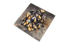 Free Mussels Stock Images - 32864644