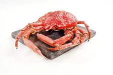 Free Wild Red Crab Royalty Free Stock Photo - 32865985