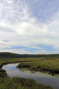 Free Algonquin Park Royalty Free Stock Image - 32869096