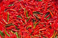 Free Pepper Royalty Free Stock Photos - 32879388