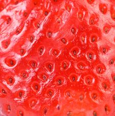 Free Extreme Macro Of Strawberry Texture - Background Stock Image - 32889221