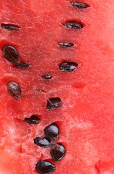 Free Ripe Red Watermelon Close Up. Macro. Texture. Stock Image - 32889391