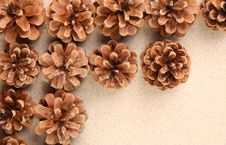 Free Pine Cones Arranged On The Sand. Stock Image - 32889961