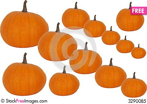 Yummy pumpkins suggestion and plea
