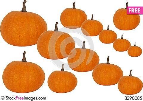 Yummy pumpkins suggestion and plea 7