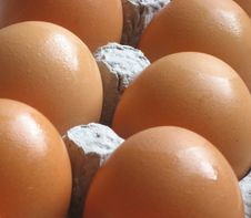 Brown Eggs, Farm Fresh Royalty Free Stock Photos