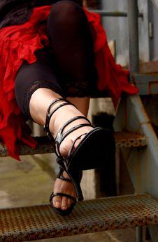 Free High-heels Royalty Free Stock Photos - 3293508