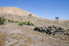 Free Arid Landscape In Lanzarote Royalty Free Stock Photo - 3295695