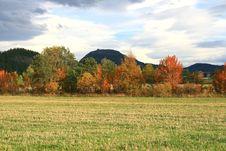 Free Nature At Fall Stock Photos - 3296373