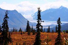 Free Alaska Royalty Free Stock Photography - 3296737