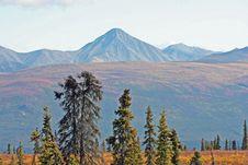 Free Alaska Stock Images - 3296744