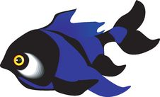 Free Blue Fish Stock Photos - 3296823