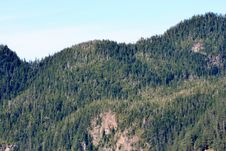 Free Forested Mountains Royalty Free Stock Images - 3296949