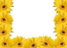 Free Flower Background Frames Stock Photo - 3297050